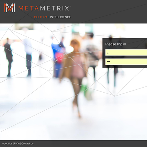 UX and Data Visualization for Metametrix
